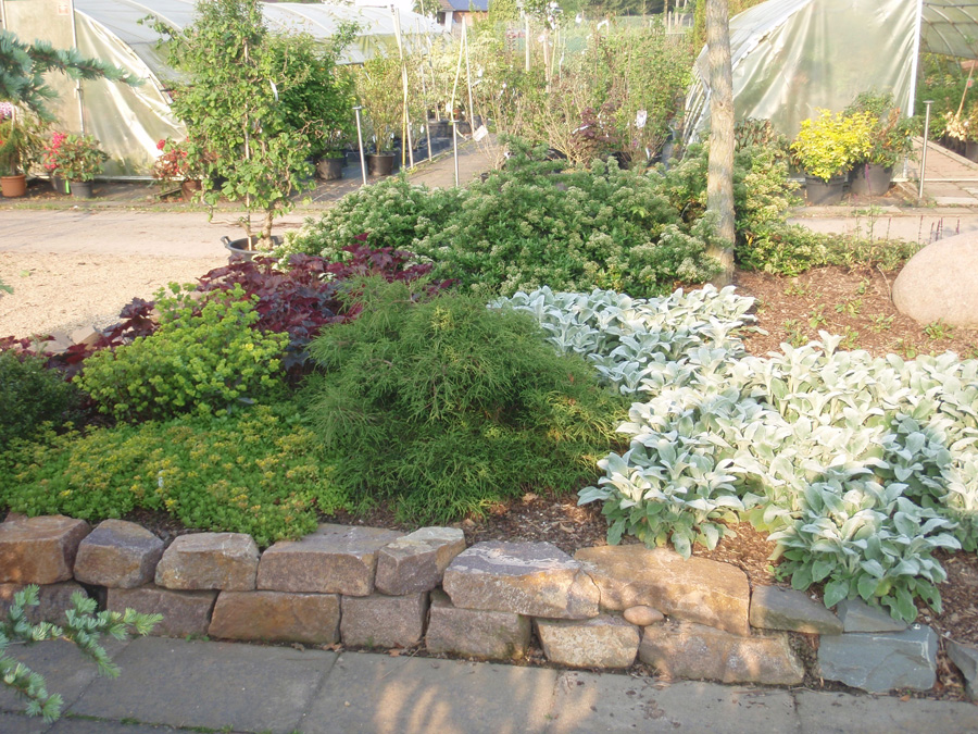 Lennatz garten landschaftsbau pflanzencenter for Pflanzencenter berlin