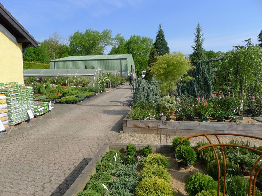 Pflanzencenter  Lennatz Garten- & Landschaftsbau, Pflanzencenter, Baumschule ...